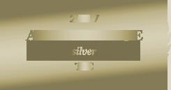 2017 Aranypenge - Silver - TVC